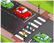 Zebra Crossing Picture